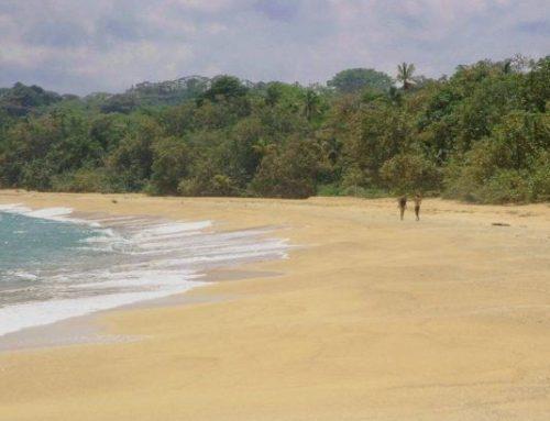 Panama – Kundalini Bliss Retreat // April 25 – May 1, 2020